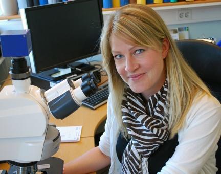 Proteinet PODXL varsler om aggressive former for blærekreft